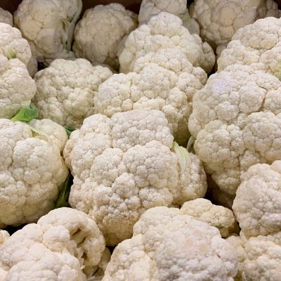 cauliflower naked_nunes2