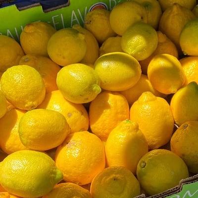 rescued-lemons-edit-713x713