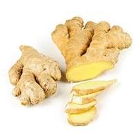 Ginger | Fresh Produce Import & Export | Allfresch Group | Allfresch